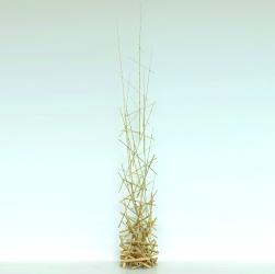 Sculpture Bambou 17