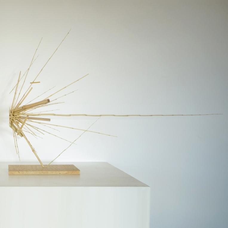 "Sculpture 25 ""L'impact"""